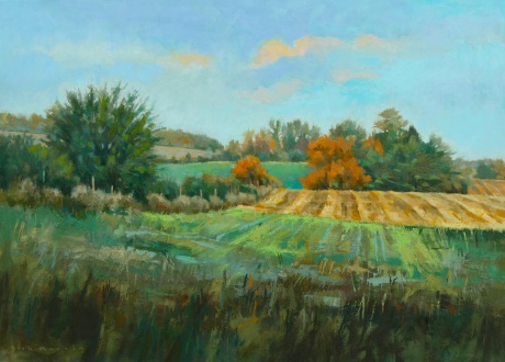 Centre_Wellington_Field_Patterns_No.2_22x28_Oil_on_Canvas